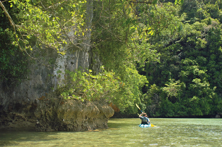 Palau: Experience the wonders of this tropical paradise