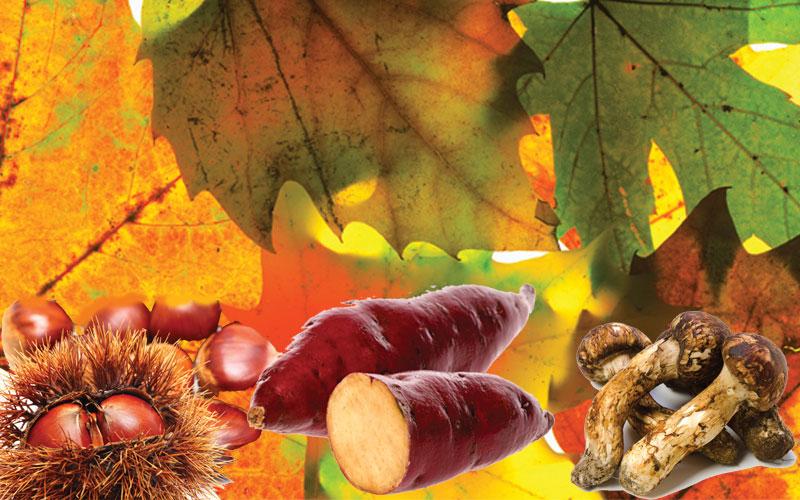 Fall treats & traditions: Celebrate the season in Japan