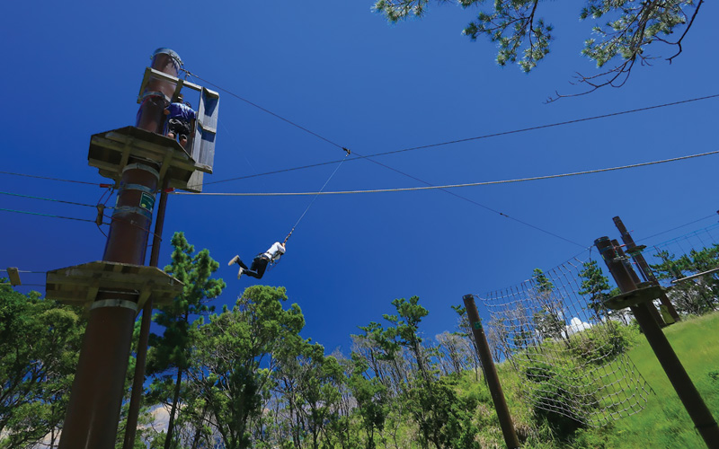 Hang on for some zip-lining fun in Japan!