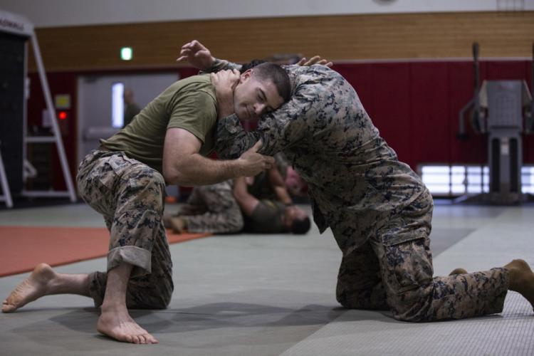 Official U.S. Marine Corps photo by Lance Cpl. Joshua Sechser