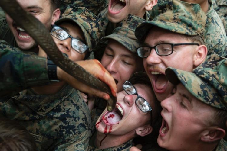 U.S. Marines with Alpha Company, Battalion Landing Team, 1st Battalion, 5th Marine Regiment, drink the blood of a king cobra as part of jungle survival training during exercise Cobra Gold 2020 at Ban Chan Khrem, Chanthaburi, Thailand, March 2, 2020. HANNAH HALL/U.S. MARINES