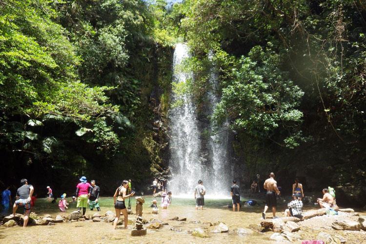 Photo courtesy of Ogimi Village Tourism Association
