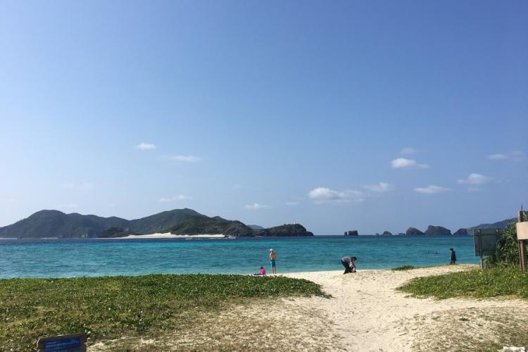 Zamami Island's Ama Beach, which is frequented by green sea turtles who come to graze on seaweed, is next to a campsite popular with foreign tourists.
