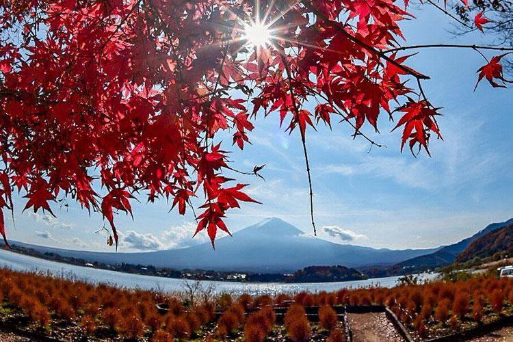 Photo by Miyuki Takiguchi