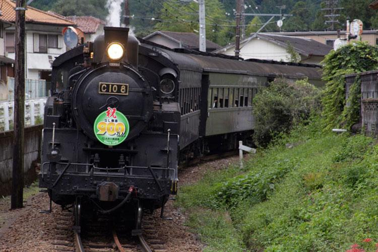 Photos by David Krigbaum