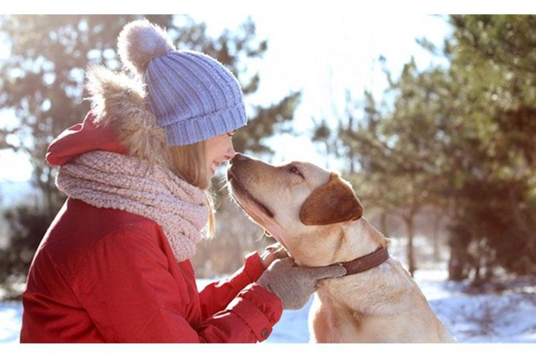 Spending time with your dog is a great way to work on the eight pillars of Total Force Fitness. According to the Centers for Disease Control and Prevention, regular walking or playing with pets can decrease blood pressure, cholesterol levels, and triglyceride levels. Pets can also help manage loneliness and depression by providing companionship. (Courtesy photo)