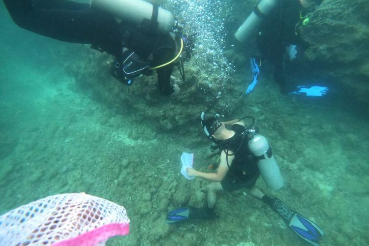 Volunteer divers search and collect trash from the ocean floor during a cleanup event hosted by Mermaid Island Diving and Project Aware in Chatan, Okinawa, Saturday, April 20, 2019. COURTESY OF TORI SHARPE